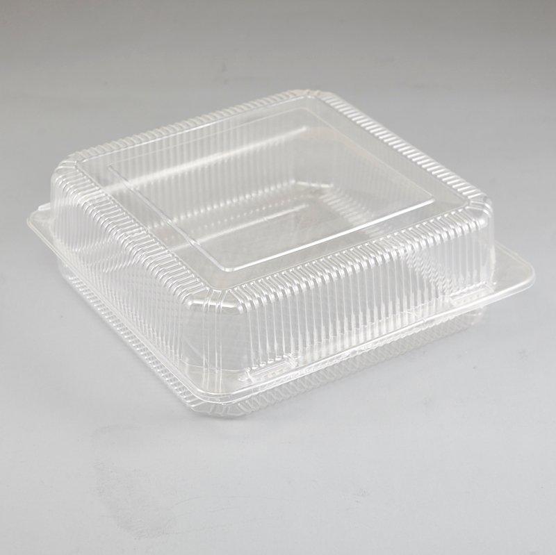 Clear Plastic Storage Case Plastic Cake Slice Box with Locking Snap