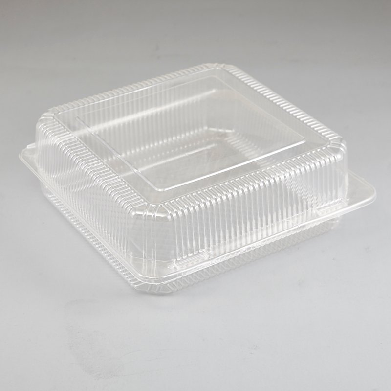 HoChong-Find Clear Plastic Storage Case Plastic Cake Slice Box With Locking Snap